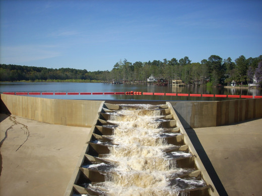 The dam creates the lake, and the fish ladder gives the fish a way in. Is your website navigation designed that well?