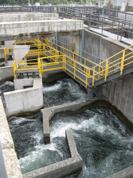 This high-tech fish ladders is designed to maximize the flow of fish upstream to their destination.