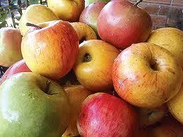 hard apples