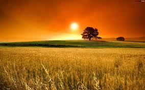 A wondrous sunset to a wonderful day.