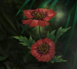Rain Poppy Herb in World of Warcraft