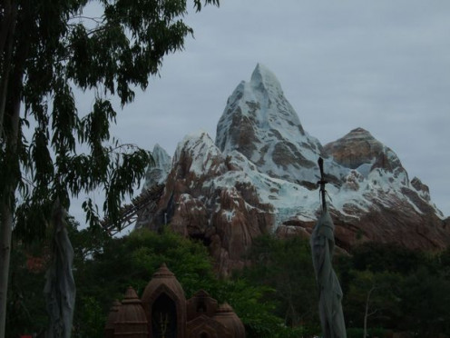 Expedition Everest which houses a thrilling roller coaster ride