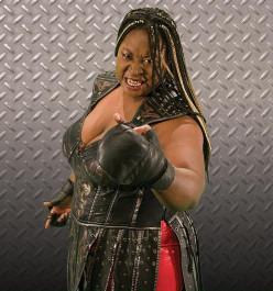 The TNA Knockouts
