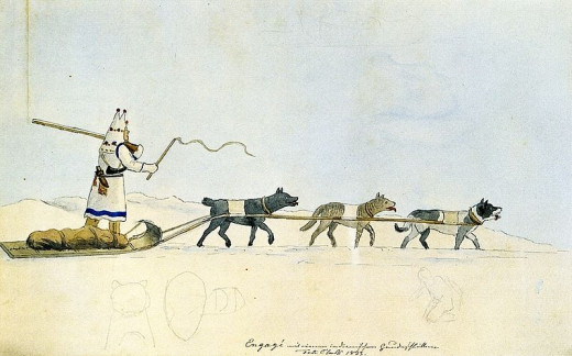 This depiction of a dog sled is said to date back to 1833.  Even here you can see the difference in dogs pulling the sled.