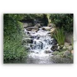 Each River A Life.