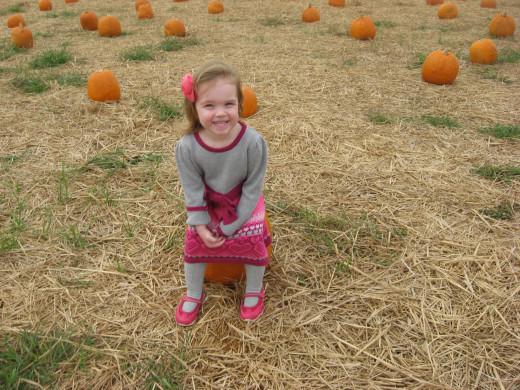 pumpkin sitting