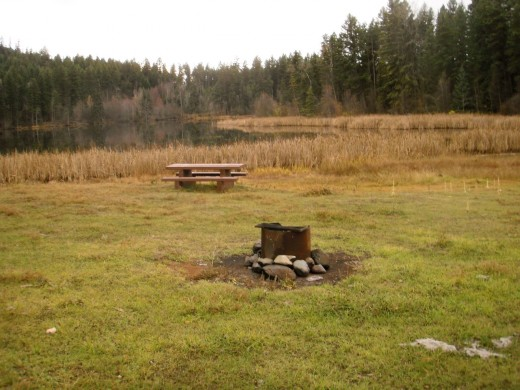 Picnic tables and a fire pit make a great place for a lunch stop on a sunny day.  Bring binoculars to watch for birds and butterflies as you eat.