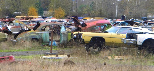 """The car graveyard."""