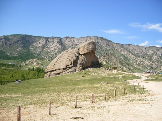 This is one of those rocks that looks like a turtle. Unfortunately it is larger than a house so it is not a good candidate for a pet.