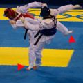 WTF Tae Kwon Do's Belt System: An In-Depth Look