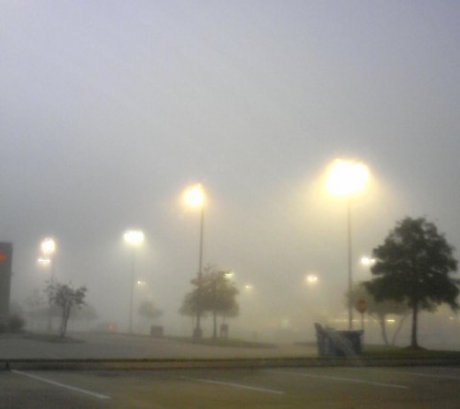 Fog clearly shows the path of light for these parking lot lamps. The lamp light has a cool effect.