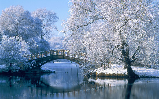 Bridge in Winter Scene