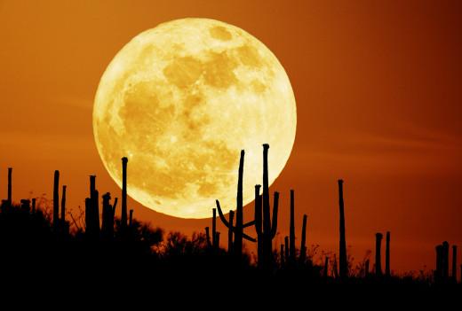 Fire Moon!