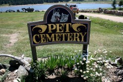Grieving For A Beloved Pet