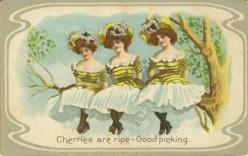 Fun Collectibles: Vintage Postcards