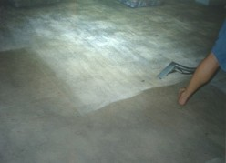 Carpet cleaning best Stain Removal professional hints & tips from Australia