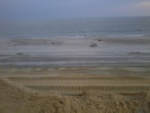 THE WORK BEGINS LESS THAN ONE WEEK AFTER HURRICANE SANDY TOOK OUR BEACHES.