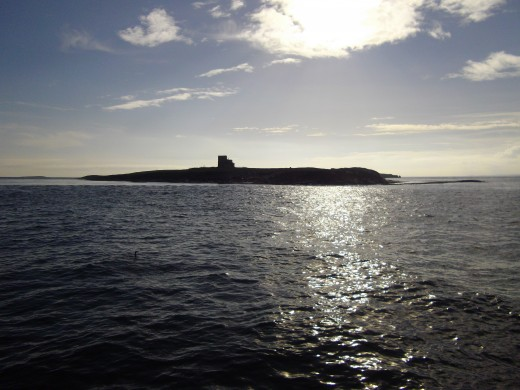 One of the Farne Islands.