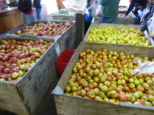 Apples, apples and more apples