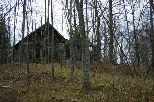 Leelanau County.  Old farmhouse in the woods