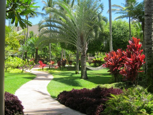 Grounds at the Kauai Marriott Resort and Beach Club
