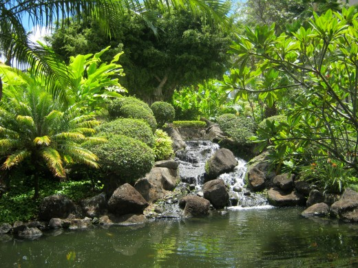 Koi pond at the Kauai Marriott Resort and Beach Club