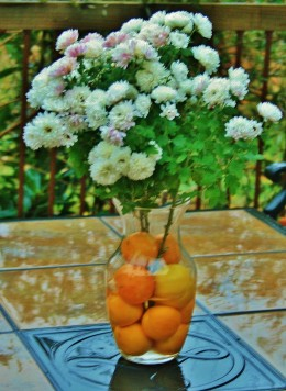 Clementines and a lemon hold late-blooming mums in place.