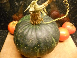 A home grown squash