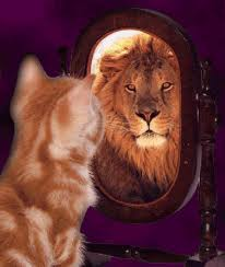 If you're the kitty, is the lion in the mirror Jesus because you show forth the God in you, or is it your own inflated ego born from self worship because you have become your own god?