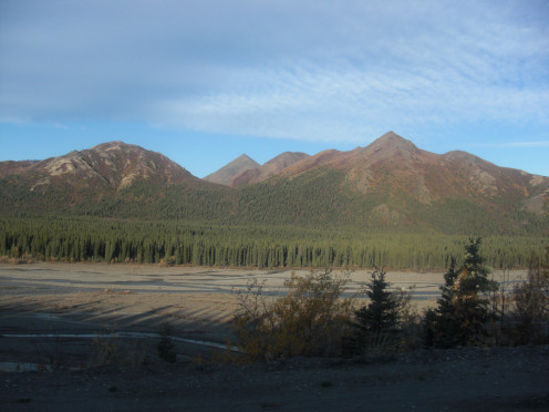 A photograph from my tour bus on the Tundra Wilderness Tour in Denali National Park