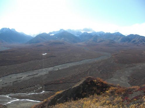 A view from the road in Denali National Park