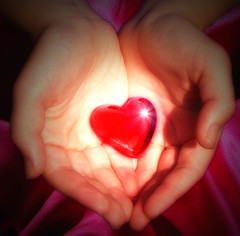 """Heart"" is one of the qualities that unites all caregivers."