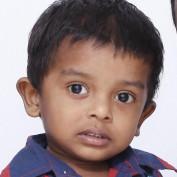 wikidoll profile image