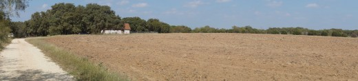 Example of panoramic mode on a plowed field in Texas.  When using this mode, you can move faster and get more horizon included in the photo.