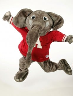 Crimson Tide Team Of Elephants