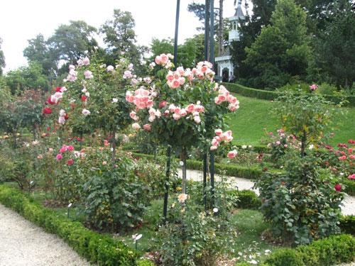 Parc de Bagatelle, France