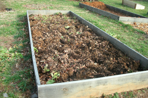 Tilling can reduce weed growth.  In small beds, hand pulling weeds can help prevent pest damage.