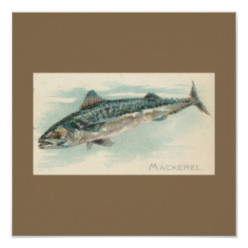 Recipe for mackerel
