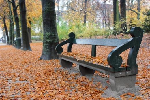 Parc de Bruxelles (Brussels)