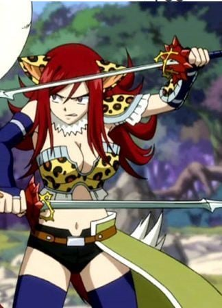 Erza Scarlet's Flight Armor