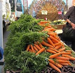 Carrots are rich in beta-carotene.