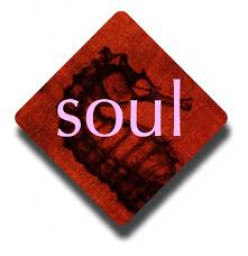 Soul Purpose with Passion