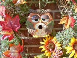 Owls are always popular, don't you think?  :)