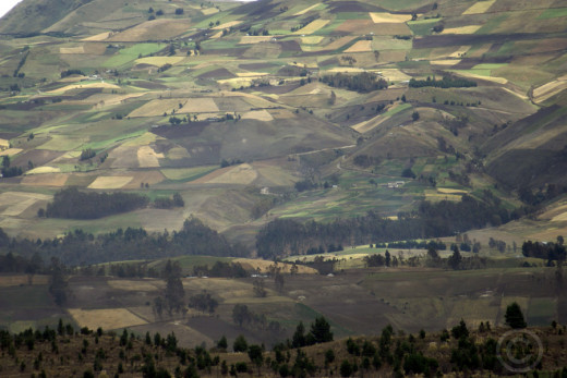 Patchwork of fields cover the lower slopes of volcanoes