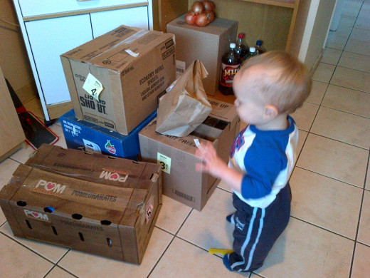 My son checking out our latest grocery delivery