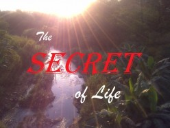Secrets of life (Poem)