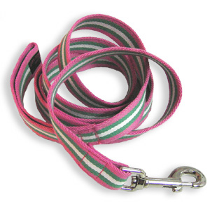 A handy leash for our grandparental units