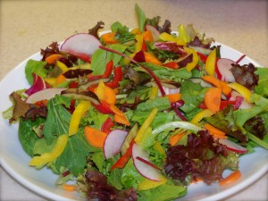 Salad:  baby greens,  bell peppers,  radish, carrots