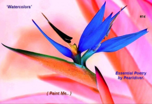 - Paint me in Watercolors #14 -
