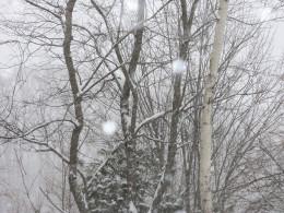 It had begun to snow.